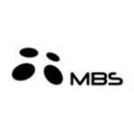 MBS pliidid